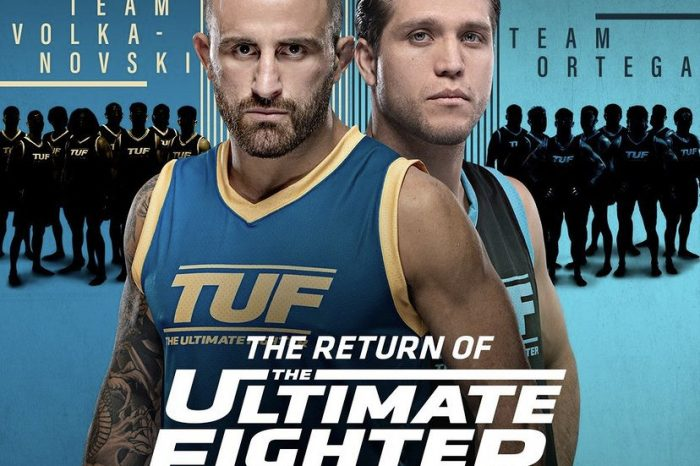 The Return of the Ultimate Fighter - What you need to know